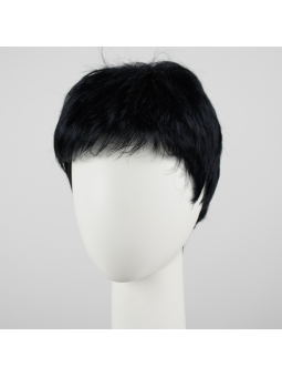 Perruque synthétique courte lisse Jolly Cosmo Black